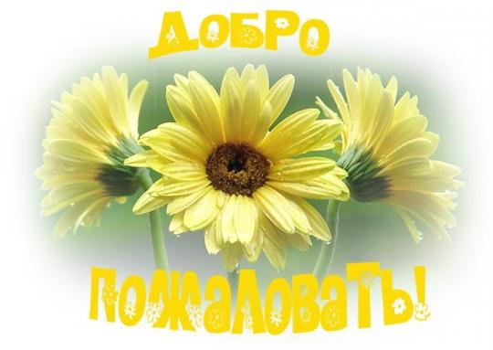 http://fialki.su/sites/default/files/1098/61425553_1ad99d3dea71.jpg