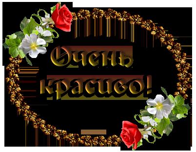 http://fialki.su/sites/default/files/299/66418047_11af4cfeff7a.png